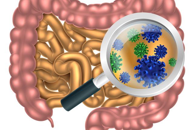 人体と微生物の関係
