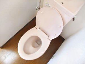 「トイレより汚い」ってどれだけ汚い?